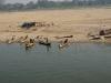 Bateaux  et village de pêcheurs sur le sable